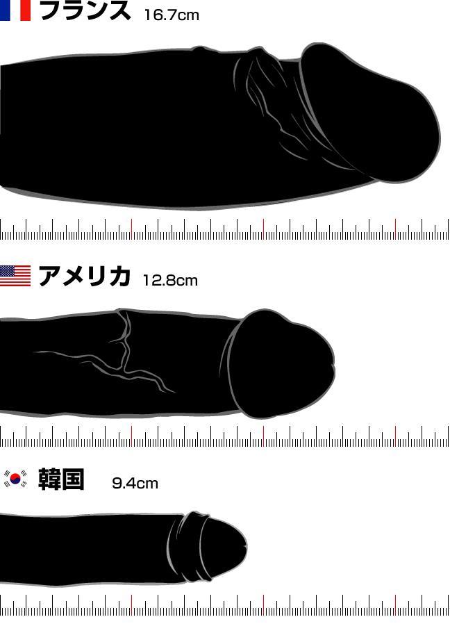 Penis size study